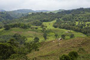 Costa Rica, une destination de choix pour les amoureux de la nature